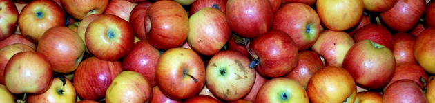 Grow Your Own Apples - Burston Garden Centre