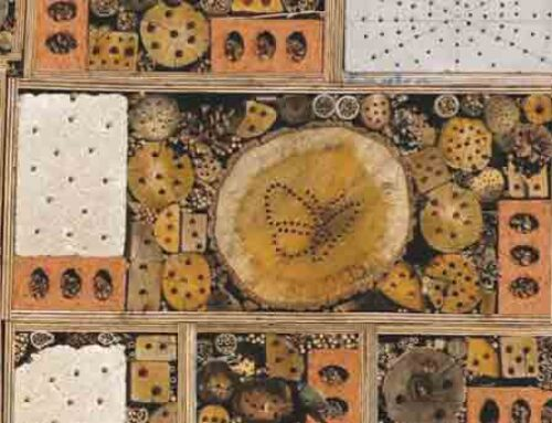 Build a Bug Hotel in Your Garden