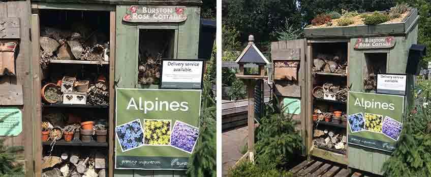 Build a Bug Hotel with Burston Garden Centre