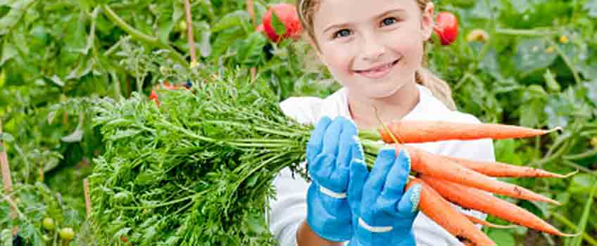 Gardening with Children - Carrot