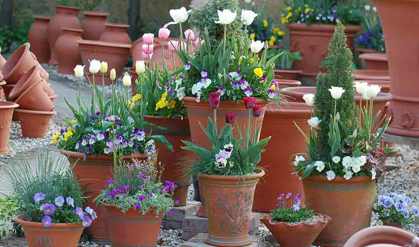 Planters and Containers for the Garden