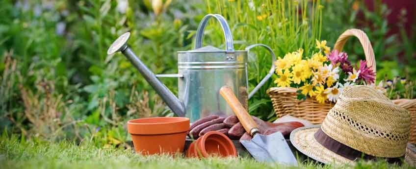 Spring Time Gardening Tips from Burston Garden Centre
