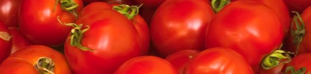 Grow Your Own Tomatoes - Burston Garden Centre
