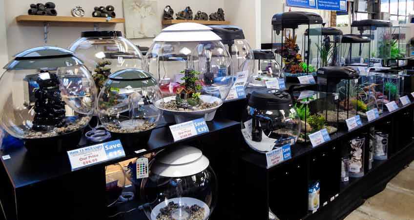 Burston Aquatics - Hertfordshire Fisheries - Aquarium - Biorb Aquariums