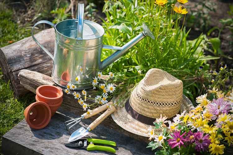 Garden Care - Burston Garden Centre