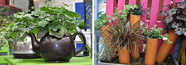 Plants at Burston Garden Centre - Recycling & Upcycling