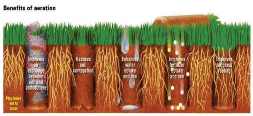 Are you garden ready - benefits of aeration