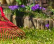 Is Your Lawn Spring Ready?
