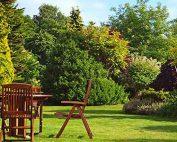 Summer is on the way - Garden Blog