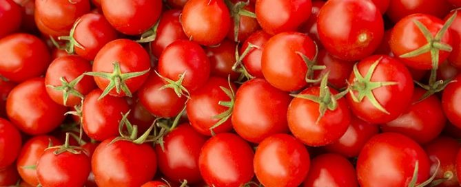 Growing Tomatoes - Burston Garden Centre Blog