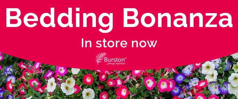 Bedding bonanza event at Burston Garden Centre