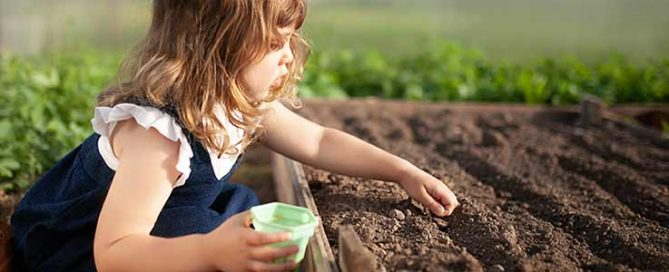 Plant Seeds - Kids Corner Blog - Burston Garden Centre