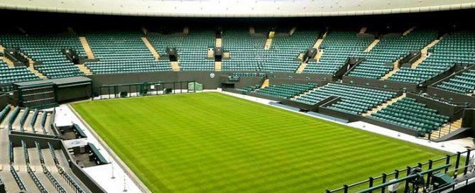Achieve Lawn like Wimbledon