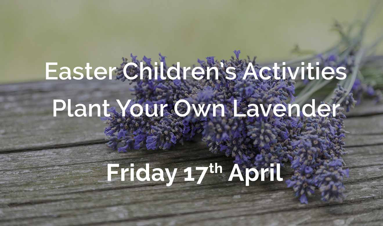 Easter Children's Activities - Plant your own lavender pot - Friday 17th April