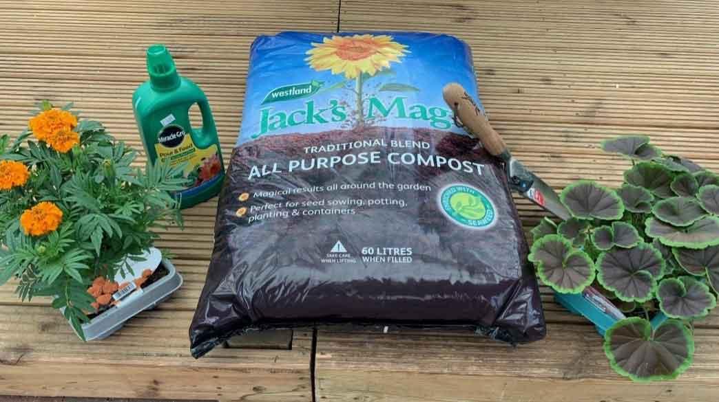 Jobs to do in the garden during August - Burston Gardening Blog